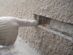 出窓からの雨漏り04